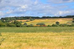 Colas Railfreight