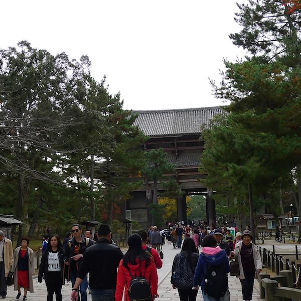 307-Nara