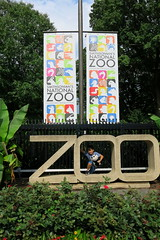 Rikelmy no Zoo. Smithsonian's National Zoo & Conservation Biology Institute. Washington, DC. Jul/2017