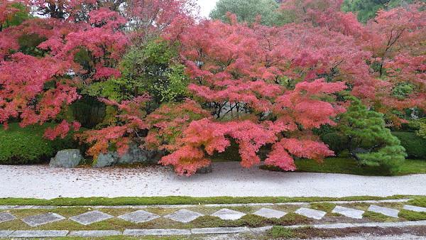 218-Kyoto