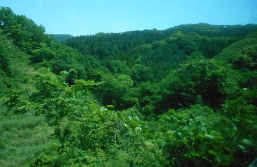 jp-kagoshima-miyazaki-train (18)