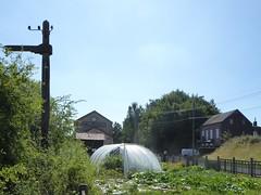 Sars-Poteries, la gare circuit du Verre   (1)