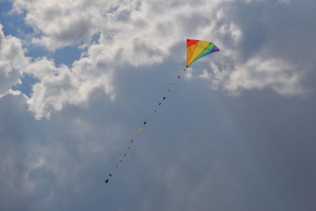 Kite, Nikon D610, AF-S Nikkor 28-300mm f/3.5-5.6G ED VR