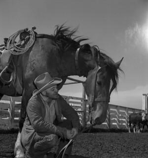 A cowboy kneels beside his horse / Cowboy agenouillé près de son cheval