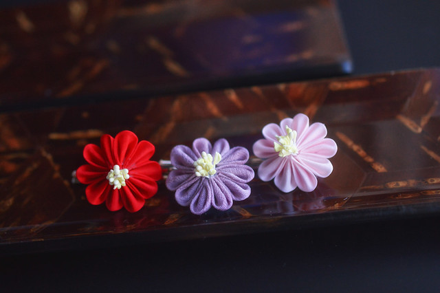 3 winter chrysanthemums