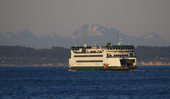 The Kennewick heads to Whidbey Island