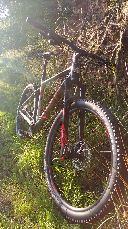 Best all rounder hardtail – Singletrack Magazine