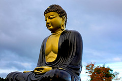 A DI DA PHAT QUAN THE AM BO TAT DAI THE CHI BO TAT GUANYIN KWANYIN BUDDHA 8989