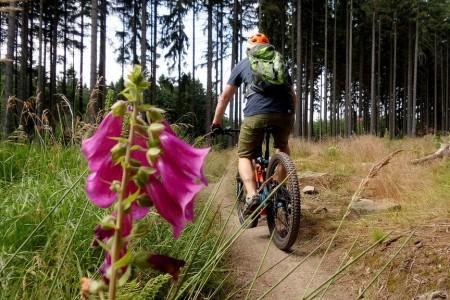 Bike SNOW tour: Frýdlantsko – singltreky, hrady, zámky