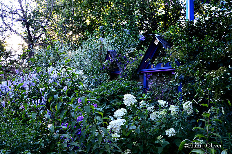 hardiman-garden-4