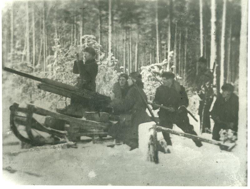 45mm-naval-AA-used-by-partisans-unit-za-sovetskuyu-rodinu-alj-1