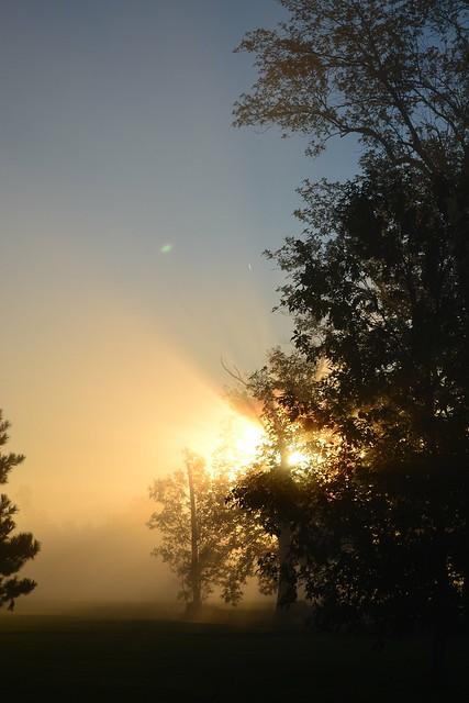 A bright misty morning