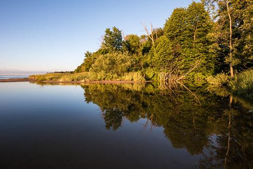 Quiet on the Creek