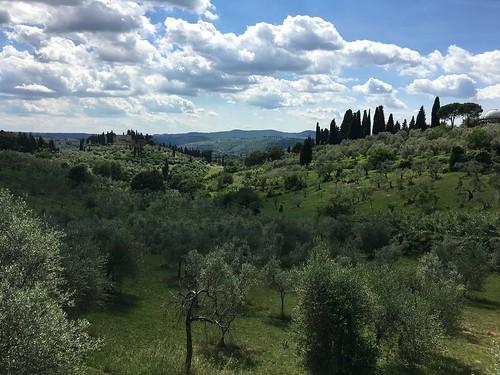 Florence IMG_4670