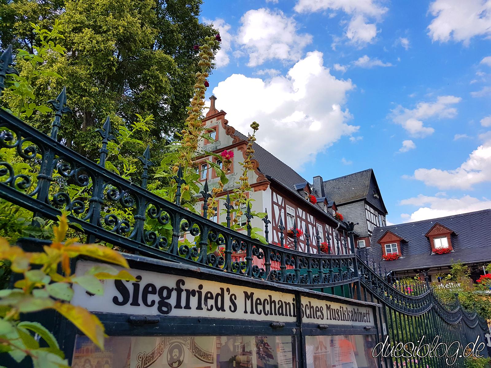 Ruedesheim Rheingau Travelblog duesiblog 055