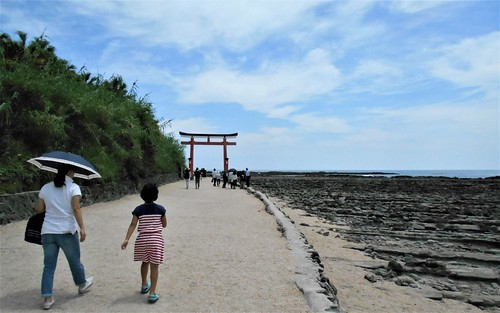 jp-aoshima-ville-île (4)