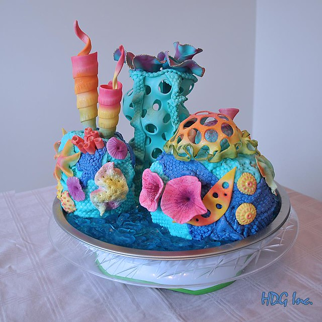 Coral Island Cake by Designer's Cakes