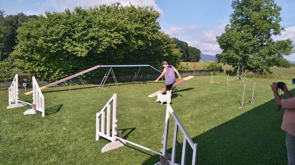 Agi-Training 22. Juli 2017