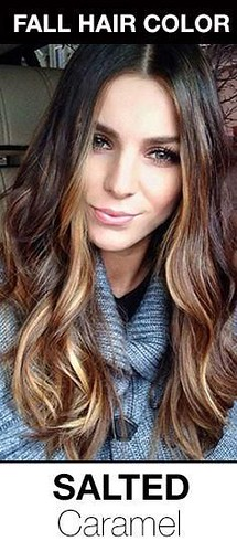 Trendy Hair Highlights : Fall + Winter 2014 Hair Color Trend Guide - Organic Color Systems