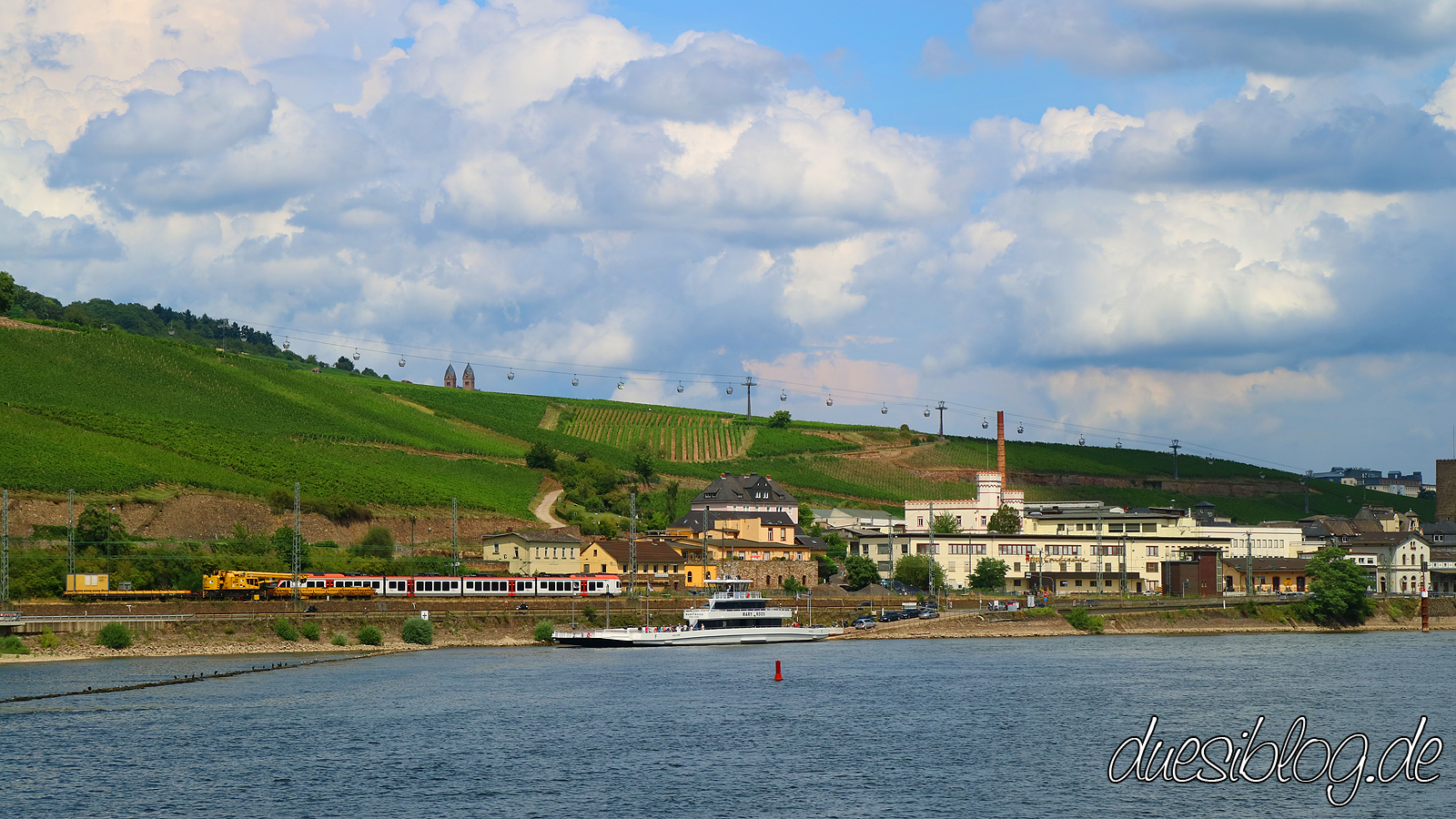 Ruedesheim Rheingau Travelblog duesiblog 154