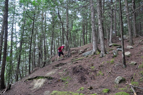 Mark on the Shield Trail at Bon Echo Provincial Park