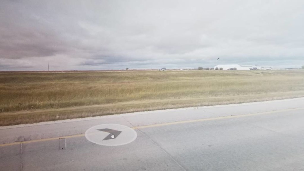 One bird. There are so few caught on camera. #ridingthroughwalls #xcanadabike #googlestreetview #manitoba