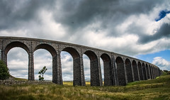 Ribblehead Viaduct Framing Tree