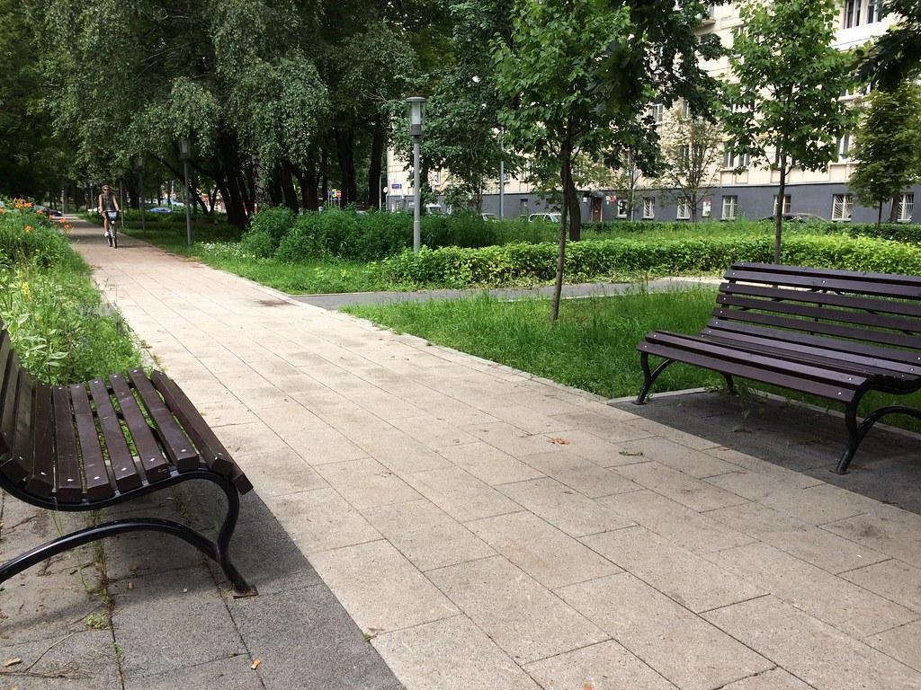 bench demography