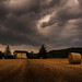The field and the storm by Enrico Cusinatti