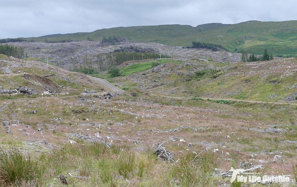 P1100180 - Langamull, Isle of Mull
