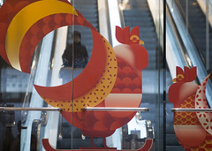 cockrell escalator copy