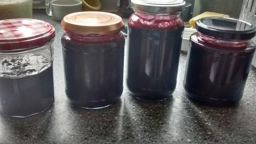 blackcurrant jam July 17 (1)