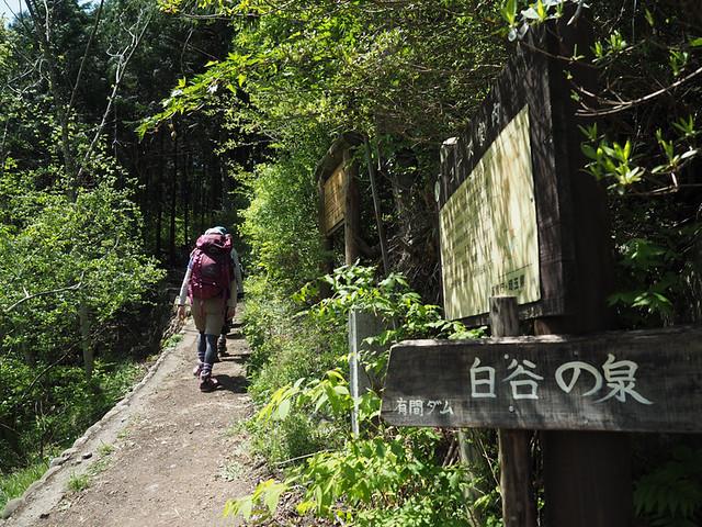 20170430-棒ノ峰-0058.jpg