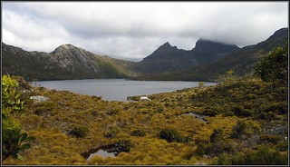 Panorama of Cradle Mountain and Dove Lake. Peter N