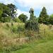 Monmouth Cemetery, Osbaston Road, Monmouth 12 July 2017
