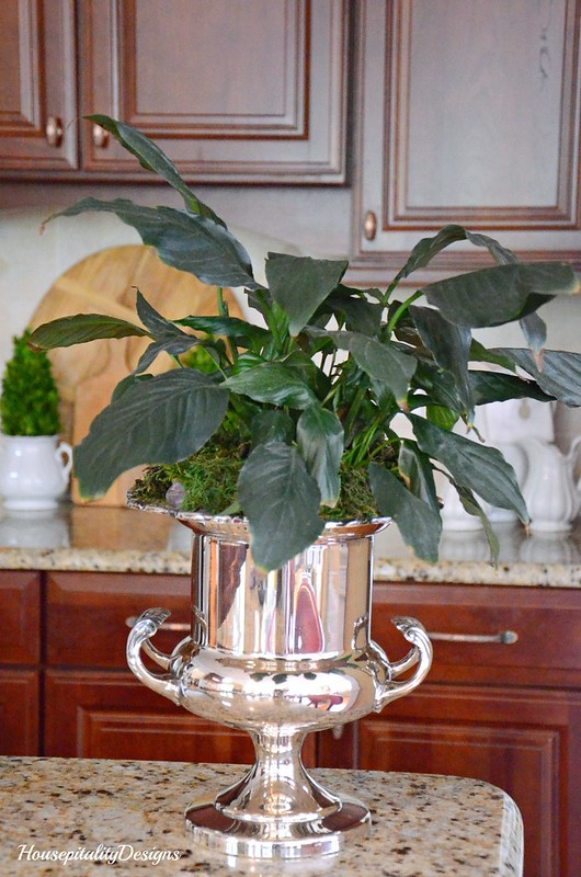 Silver Champagne Bucket-Housepitality Designs