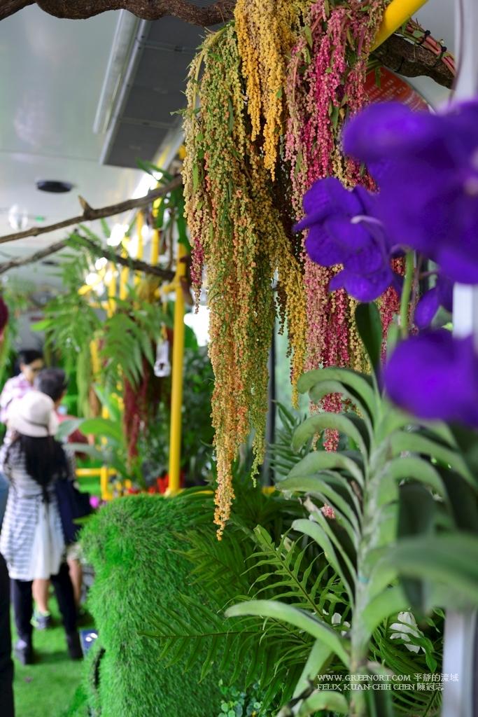 人文攝影: 參觀與體驗台北市森林公車