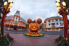 Mickeys-Halloween-Party-Disneyland