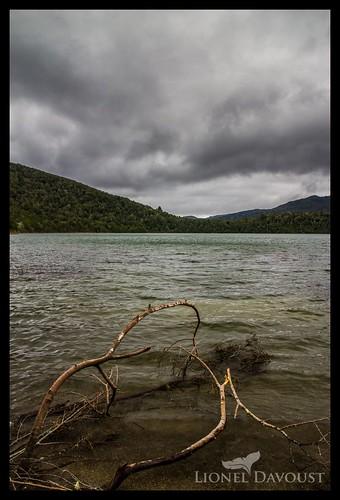 Stormy Zealand