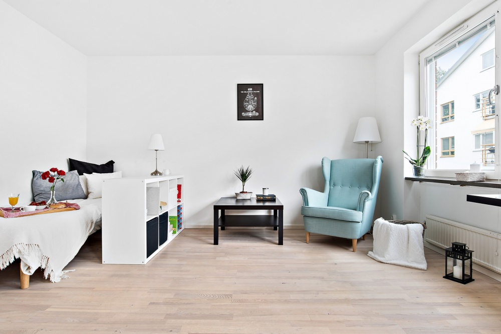 Tiny Studio Scandinavian Apartment