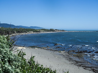 North Point Viewing Area on the Año Nuevo Point Trail