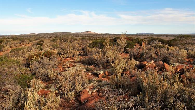 View from Wild Dog Hill Summit, Whyalla Conservation Park, South Australia