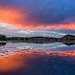 Sunset Split by TreeRose Photography