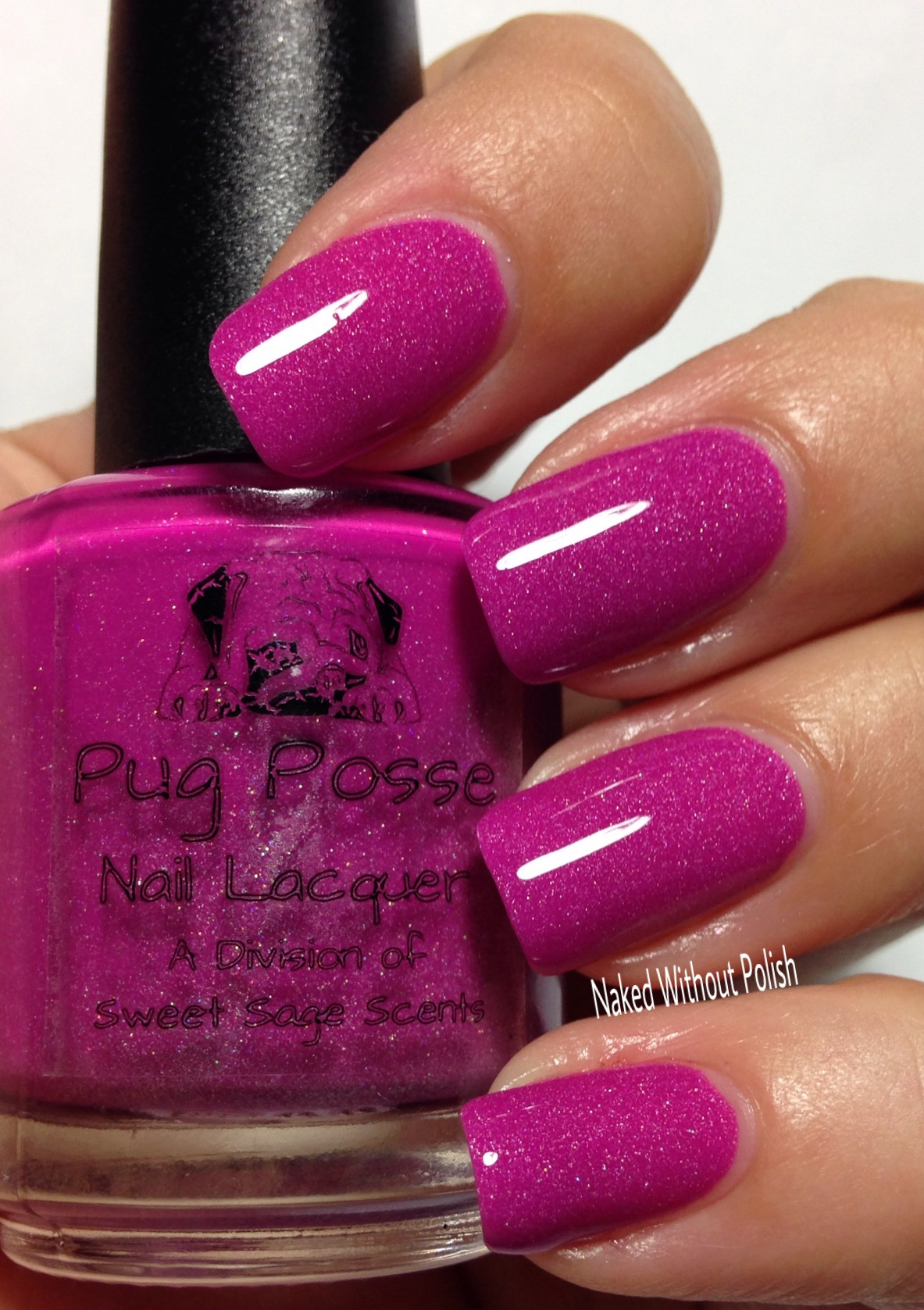Pug-Posse-Nail-Lacquer-Loose-Lucy-11