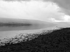 That's rather Scottish. . #locationindependent #Inverary