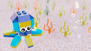 40245 Octopus by Steven Reid