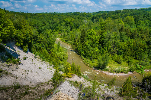 toronto ontario canada rouge nationalpark national urban park trees forest river scenic scenery summer beautiful amazing view viewpoint vista nikon d750 landscape natu nature