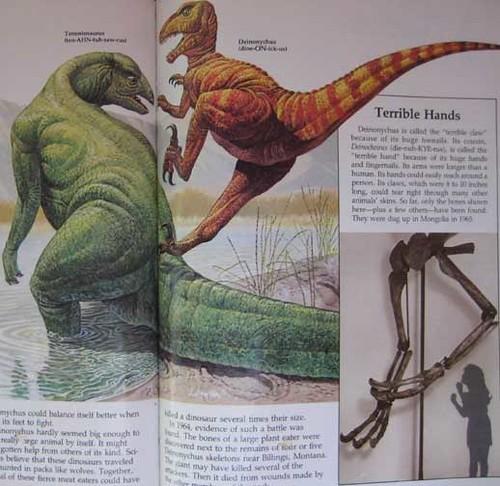 Ranger Rick's Dinosaur Book