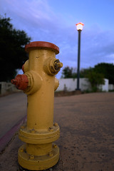 yellow and orange hydrant, and lamp post in nice light