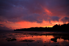 Sointula sunsets-6482